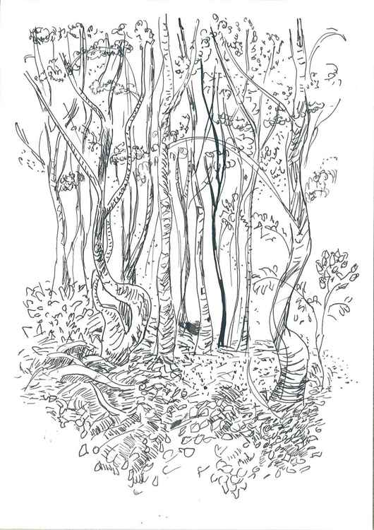 Trees II -