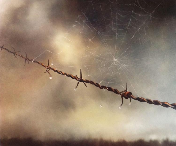 Delicate Entanglement - Image 0