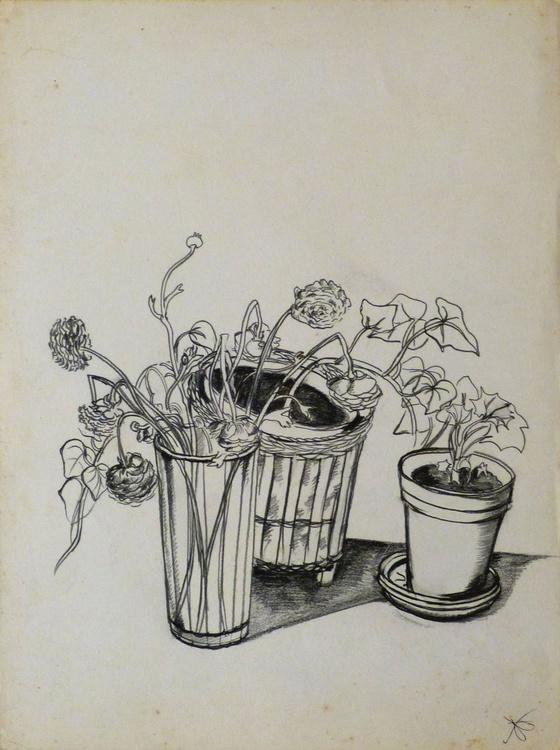 Still Life: House Plants, 24x32 cm - Image 0