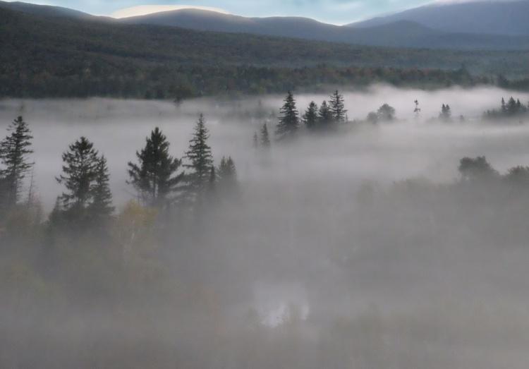 Morning Fog 3 - Image 0