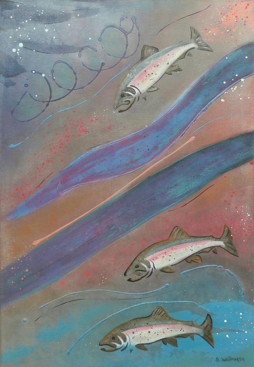 Rainbow Trout - Image 0