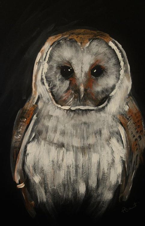 Barn Owl, framed acrylic painting - Image 0