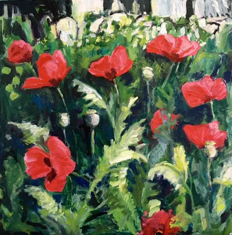 Poppies in the Garden -