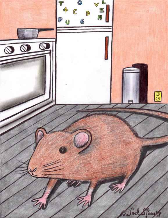 Rat's tales -