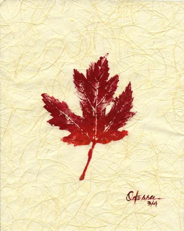 Botanical Single Maple Leaf Rubbing #3 - Image 0