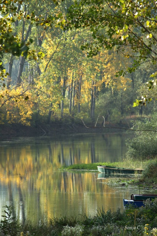 Fall day on the river - Image 0