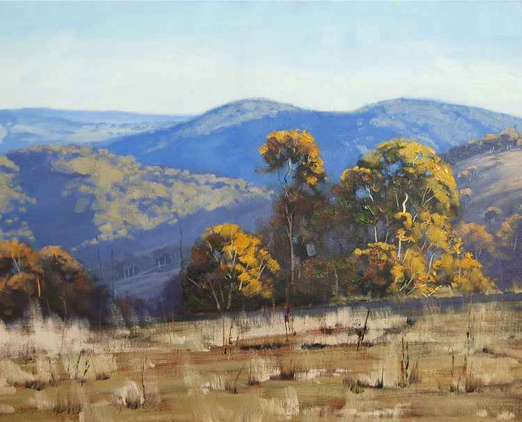 """ Summer After noon near Bathurst""  nsw"
