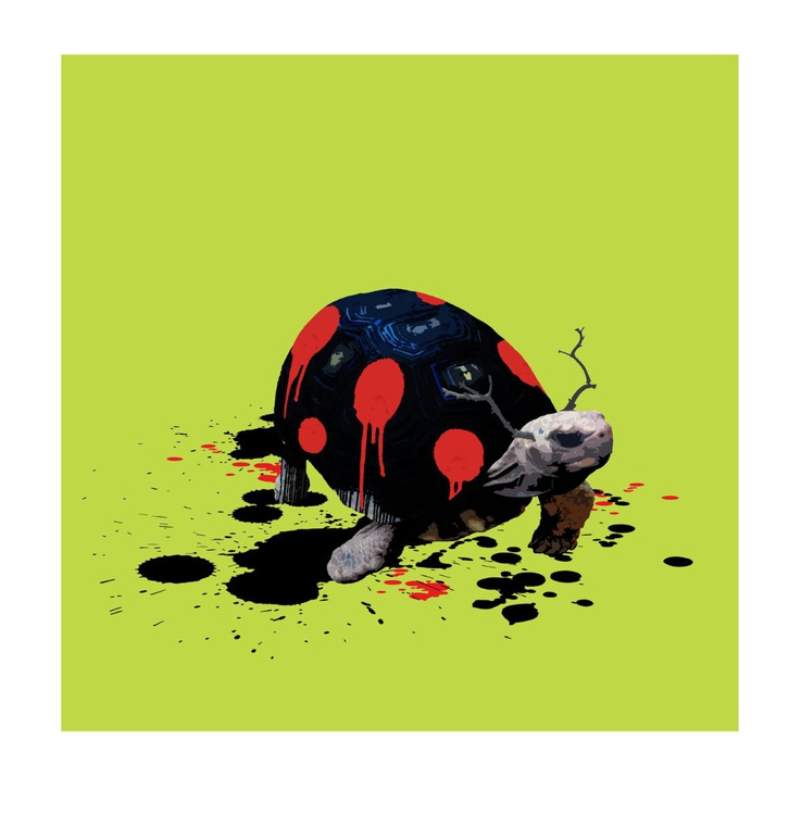 The Tortoise Who Wanted to be a Ladybird - Image 0