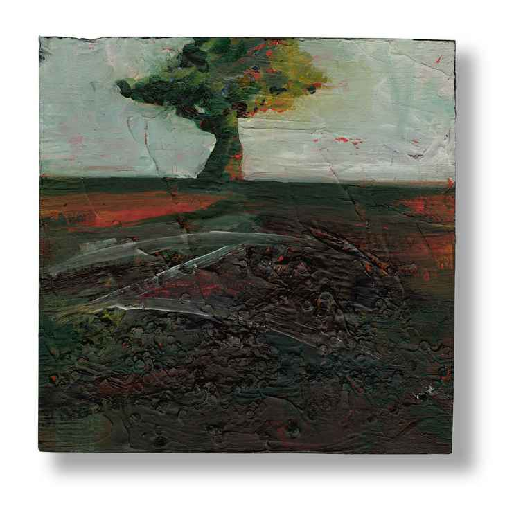Lone Tree No. 25 -