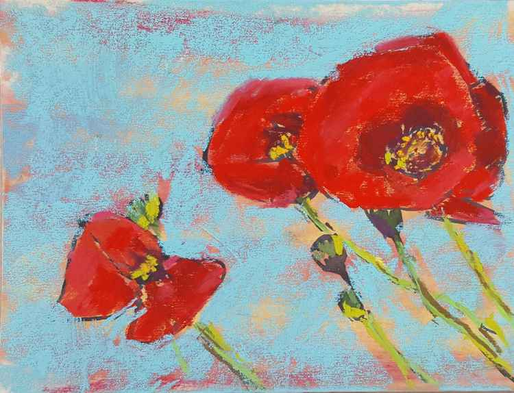 Pretty red poppies -