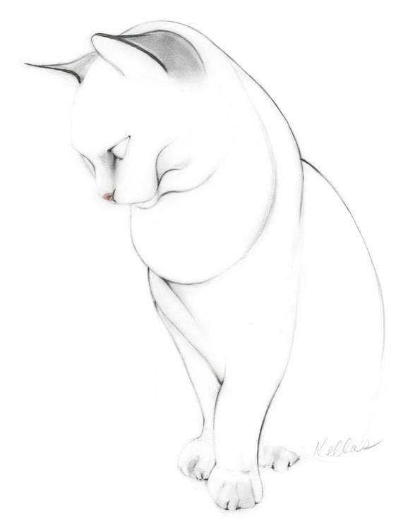 Charlie the Cat in Graphite and Charcoal Pencils - Image 0