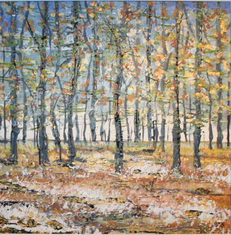 Micheldever Woods in Winter I -