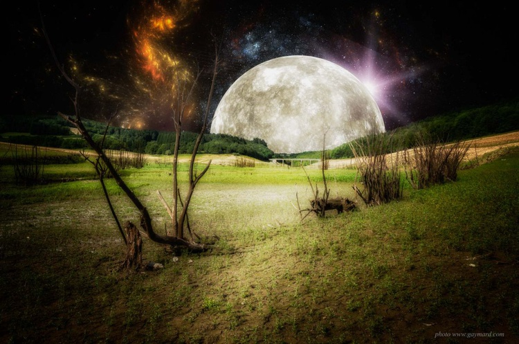 The incredible moonlight - Image 0