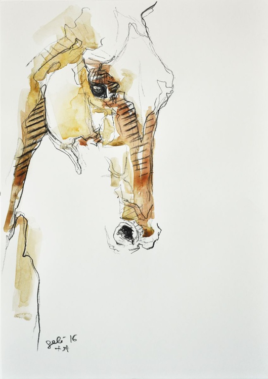 Equine Nude 17t - Image 0