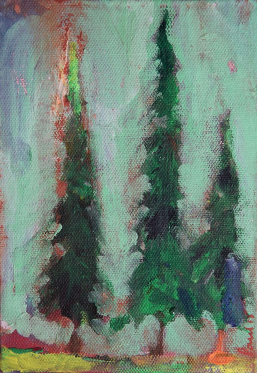 A Forest - Fir Trees - Image 0