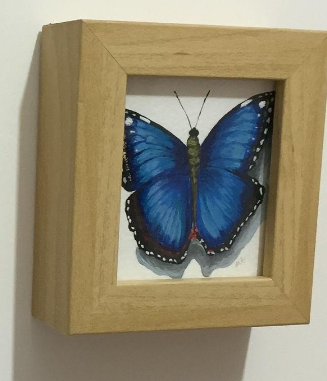 Blue flutterby - Image 0