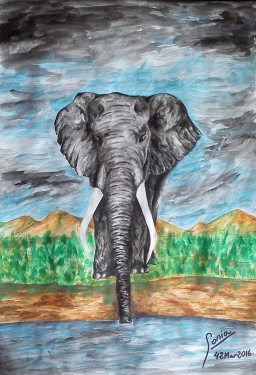 Elephant on the river - Image 0