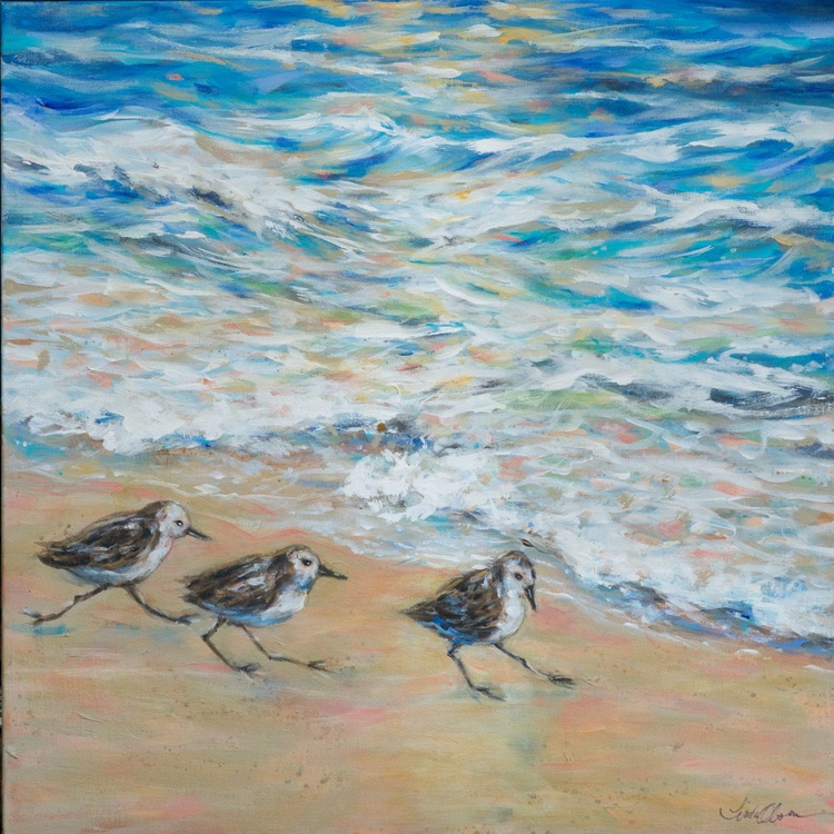 Sanderlings Running - Image 0
