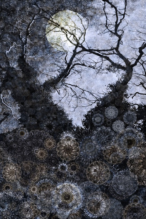 Midnight Forest (Ltd Edition of only 20 Fine Art Giclee prints from original artwork) - Image 0