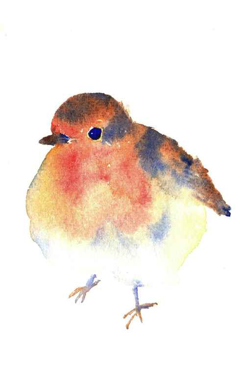 Fluffy Robin - Watercolour Painting