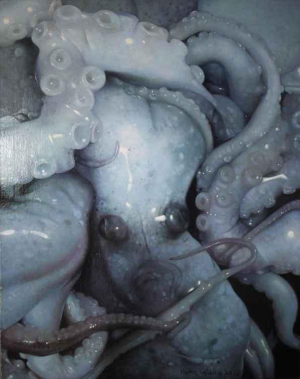 series of 'The aquatic animal' -