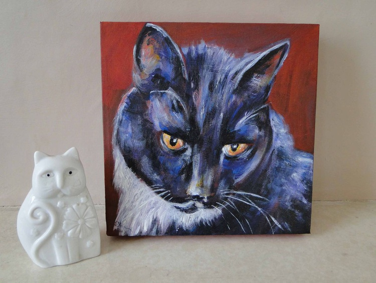 Black & White Cat - Image 0