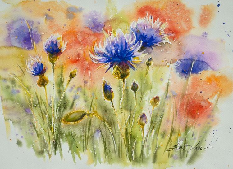 Blue cornflowers - Image 0