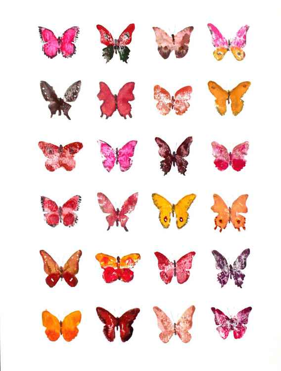 Twenty-four Butterflies 3040RO1