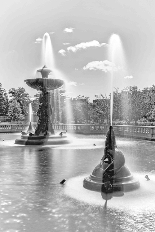 Fountain Friends - Image 0