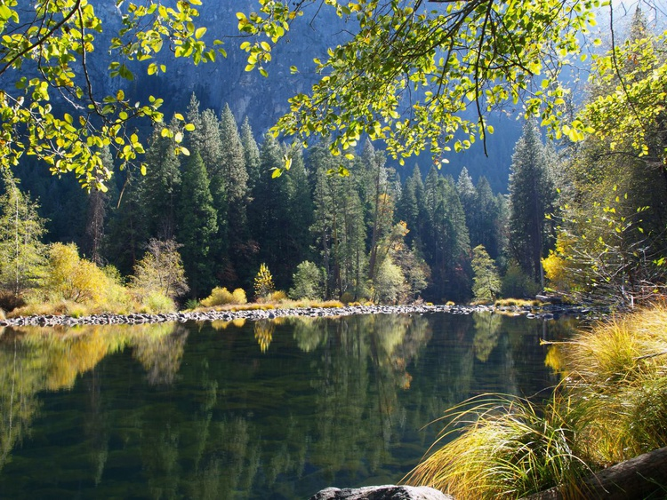 Merced River Reflections - Image 0