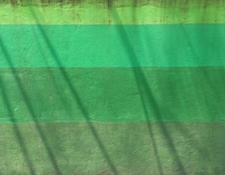 United In Green - Image 0