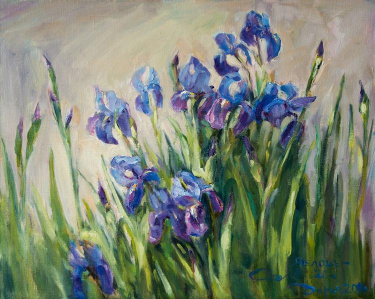 Blue Irises - Image 0