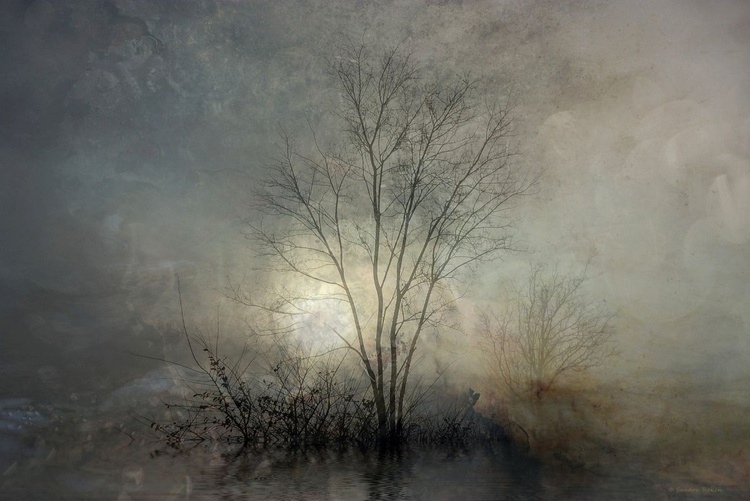 At the end of Autumn - Canvas 75 x 50 cm - Image 0