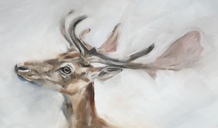 Fallow Deer - Image 0