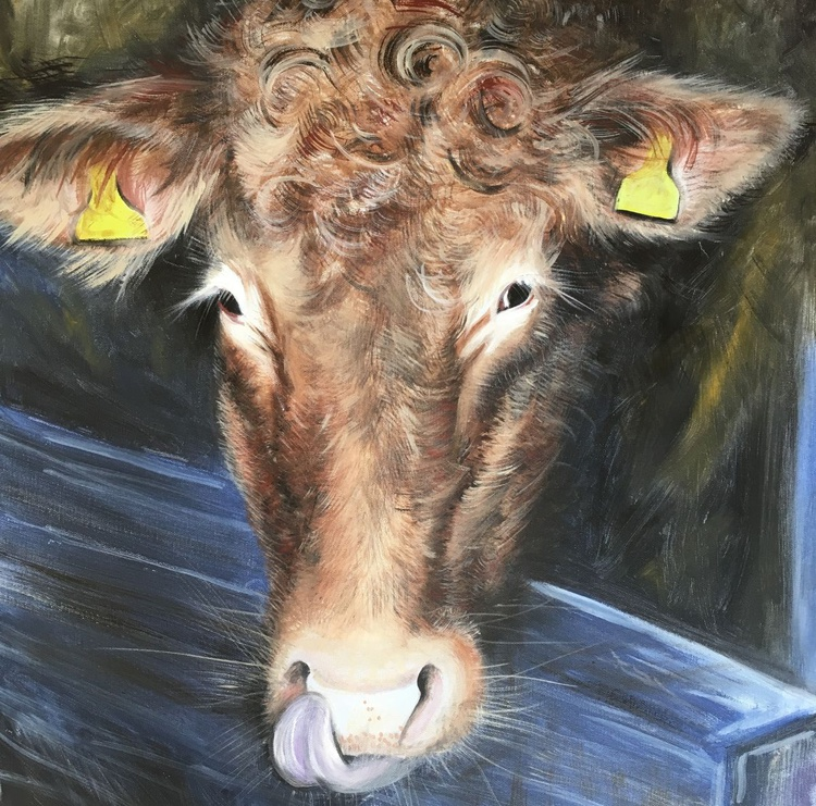 Brown cow, yellow tags - Image 0
