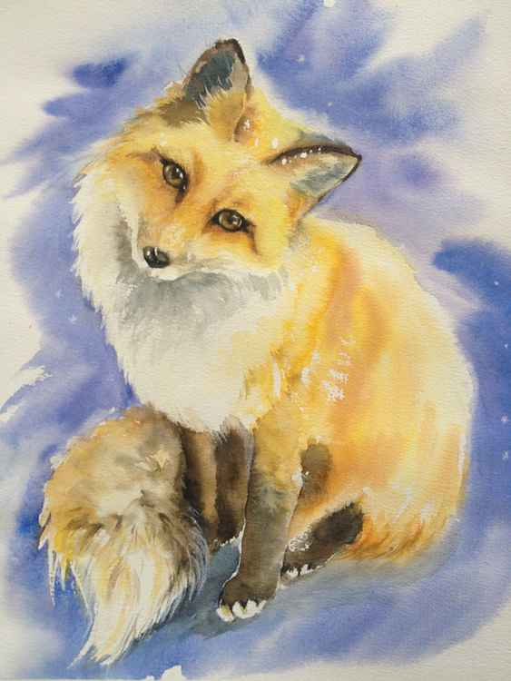 Small fox -