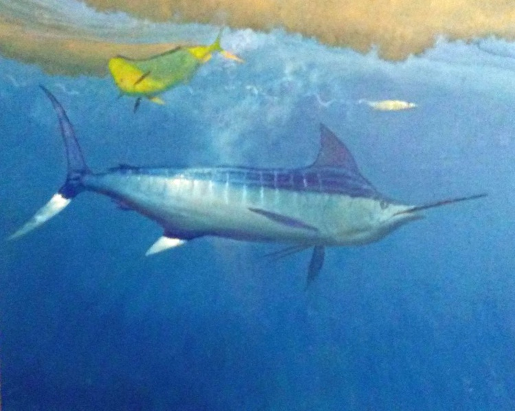 Split Decision - Blue Marlin with Bull Dolphin - Image 0