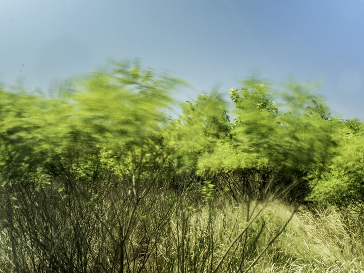 Wind On The Banks - Image 0