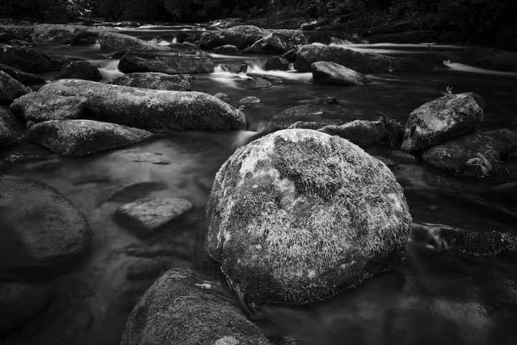 Stoney Creek -