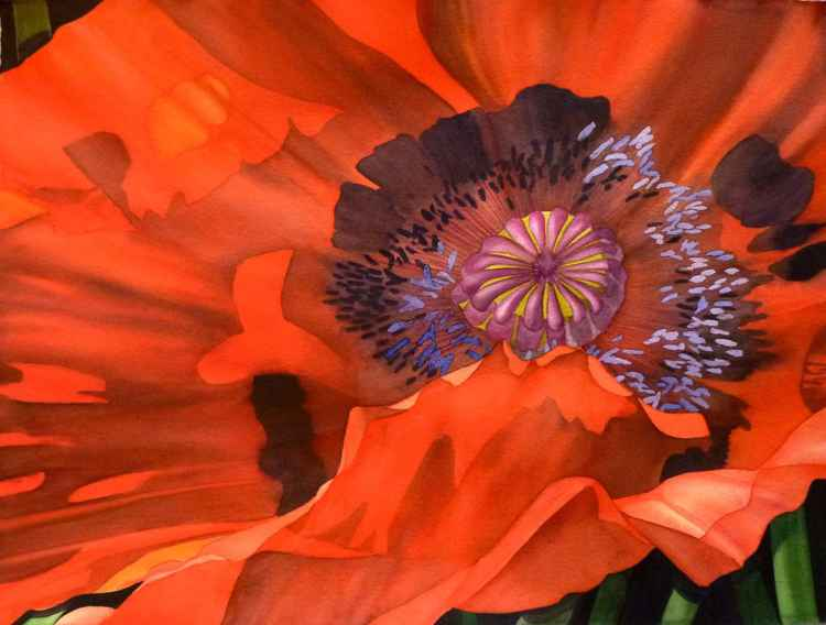 Orange See -