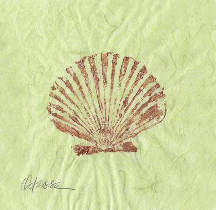 Shell Gyotaku