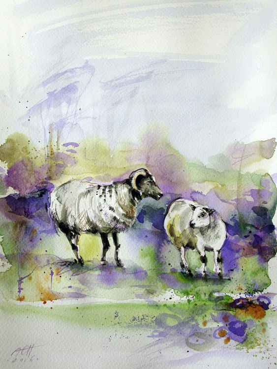 sheep watercolour original painting signed