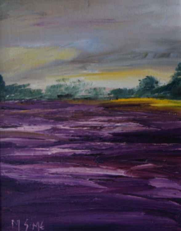 Lavender Field (X13) -