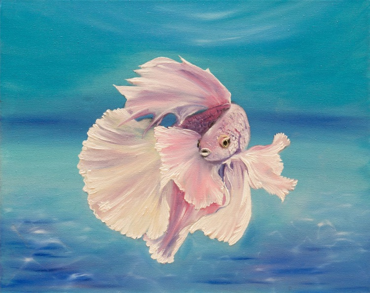 Siamese fighting fish - Image 0