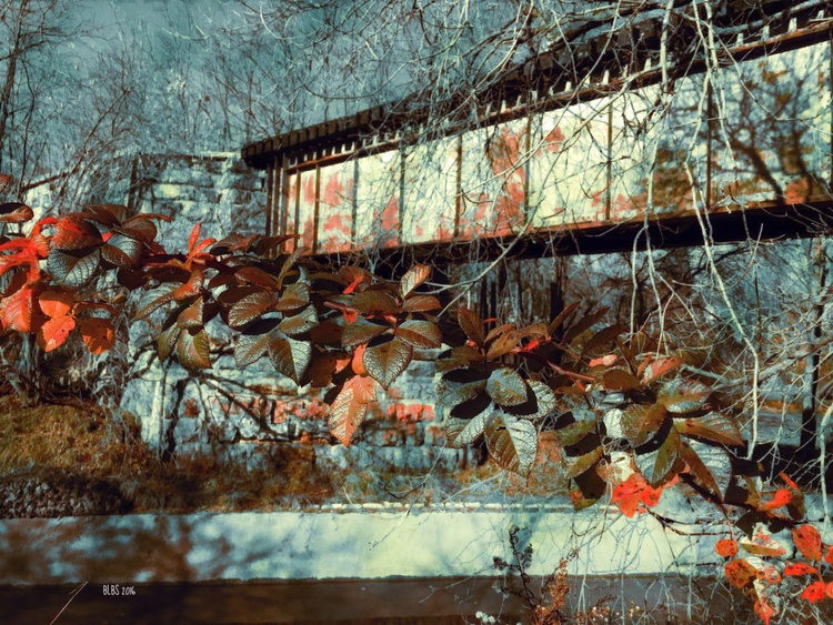 Autumn Leaves by Train Trestle - Image 0