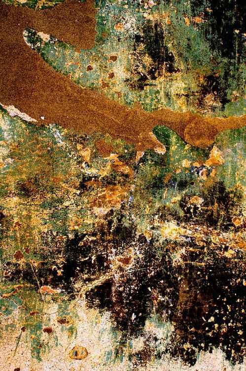 House of Klimt