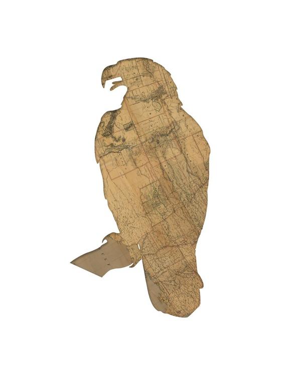american eagle map bird - Image 0
