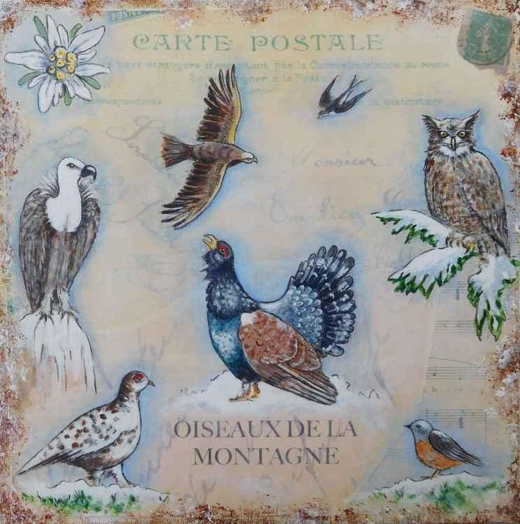 Oiseaux de la Montagne -