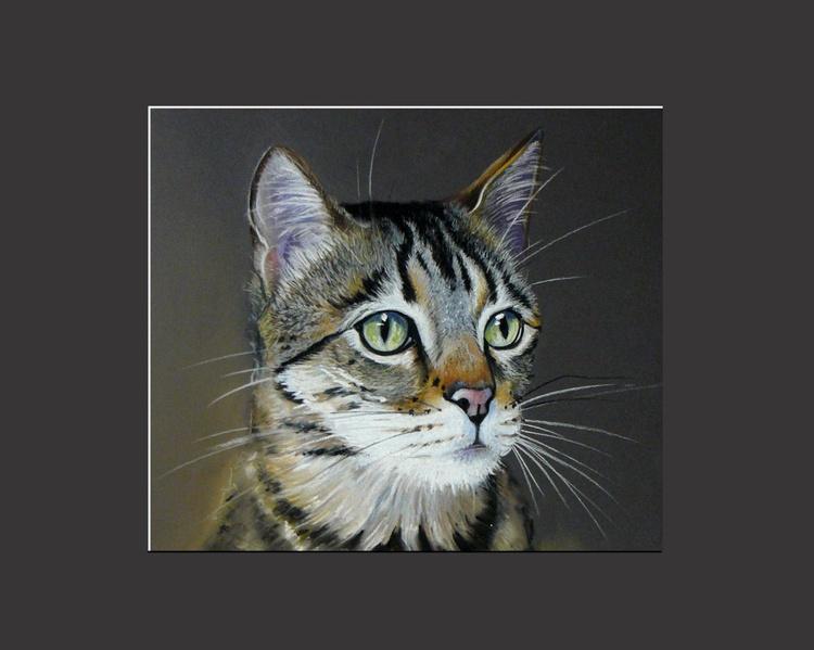 Tabby Cat - Image 0