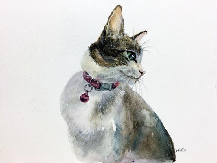 xiaomi the cat #14 - Image 0